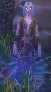 Image of Ghostly Night Elf Celebrant