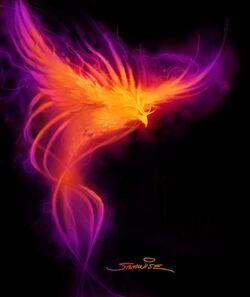 Phoenix concept.jpg