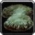 Inv misc herb gravemoss.png