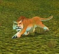 Image of Mountain Cougar