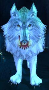 Image of Spirit of Goldrinn
