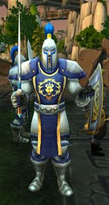 Image of Royal Bodyguard