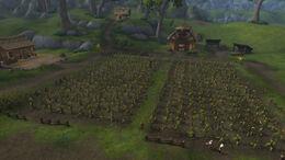 Dabyrie's Farmstead BfA.jpg