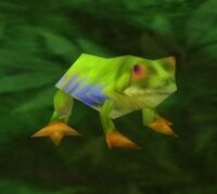 Image of Spotted Bell Frog