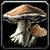 Inv mushroom 01.png