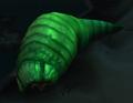 Bursting Maggot.png