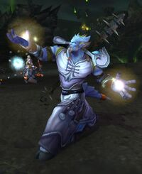 Image of Alliance Priest