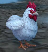 Image of Dun Morogh Chicken