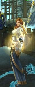 Image of Fordragon High Priest