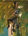 Slingtail Treeleaper.jpg