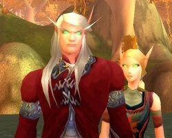 Blood Elves In Game.jpg