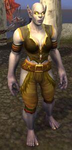 Image of Dragonmaw Merchant