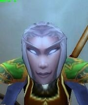 Flimsy Female Night Elf Mask.jpg