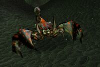 Image of Scorchshell Pincer