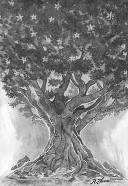 Traveler - Forever Tree.jpg