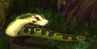 Image of Marsh Anaconda