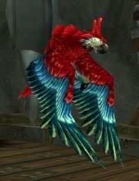 Image of Monstrous Parrot