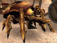 Image of Silithid Searcher