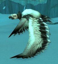 Image of Dragonbone Hatchling