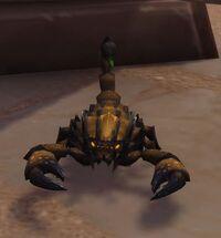 Image of Scorpid Hatchling