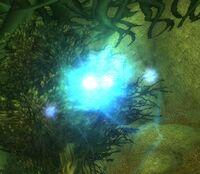 Image of Talonbranch Wisp