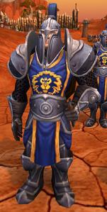 Image of Stormwind Knight