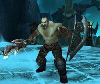 Image of Mjordin Combatant