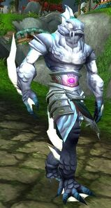 Image of Strong Assai