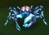Image of Shore Crab