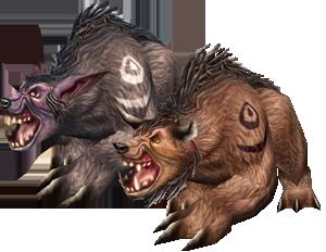 The Druid Bear Form