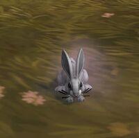 Image of Dust Bunny
