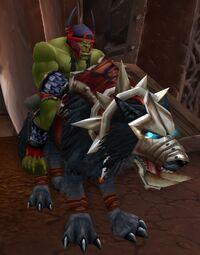 Image of Raider Bork