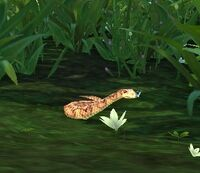 Image of Grove Viper