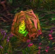 Timberling Sprout.jpg