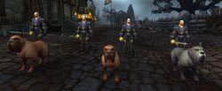 Stormglen Defenders and Stormglen Mastiffs.jpg