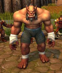 Image of Mag'har Pitfighter