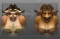 Model updates - tauren female.jpg