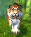 Wild Huntress.jpg