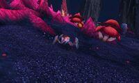 Image of Crimson Shale Hatchling
