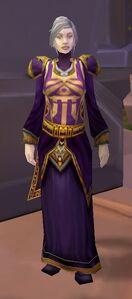Image of Friendly Dalaran Wizard