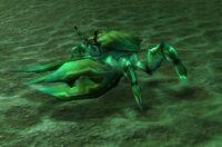 Image of King Crawler