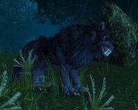 Image of Black Ravager