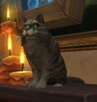 Image of Meow-Meow