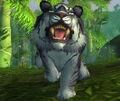 Bamboo Prowler.jpg