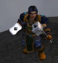 Image of Wildhammer Raider
