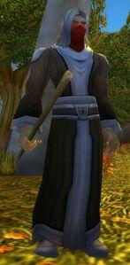 Image of Defias Rogue Wizard