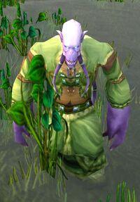Image of Elementalist Lo'ap