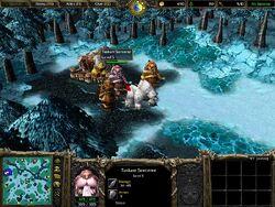 Warcraft III creep Tuskarr Sorcerer.jpg