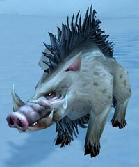 Image of Scarred Crag Boar
