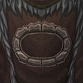 Tabard of the Earthen Ring.jpg